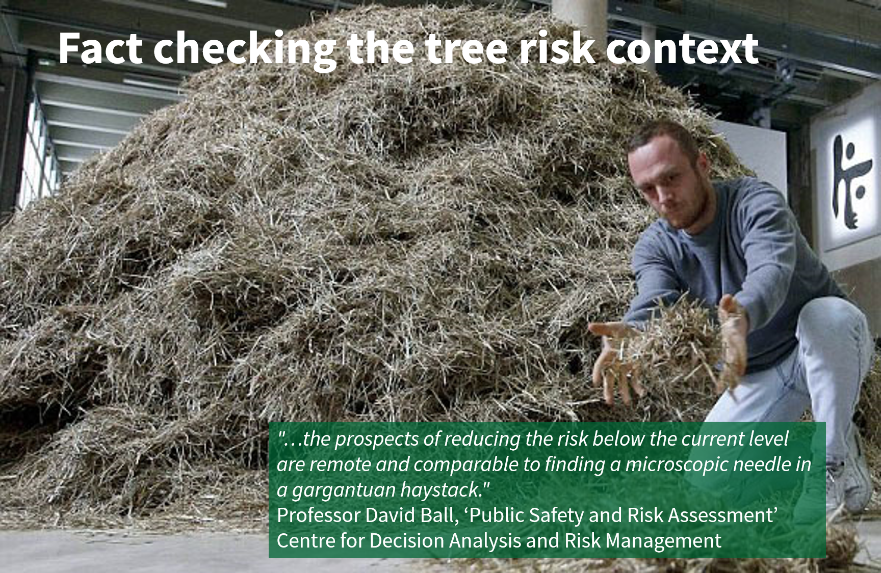 Tree risk management | Finding a microscopic need in a gargantuan haystack